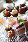 Assorted filled chocolates and miniature cakes