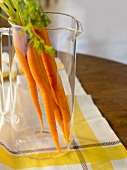 Whole Carrots with Stems in a Glass Pitcher; On a Cloth on a Table