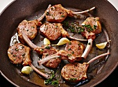Fried lamb chops with garlic and thyme