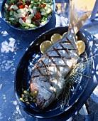 Grilled gilt-head bream with Greek salad