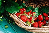 Fresh strawberries with leaves in basket