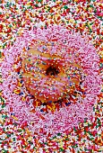 a doughnut with hundred and thousand sweets