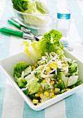 Lettuce with bean sprouts, cucumber, sweetcorn and chunks of pepper