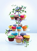 A tiered cake stand with lots of colourful cupcakes