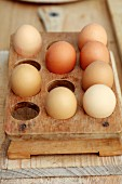 Pale brown eggs in vintage, wooden egg rack