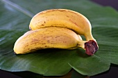 Bananas on a leaf