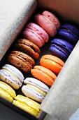 Bunte Macarons im Karton