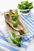 Smoked herring fillets with lamb's lettuce