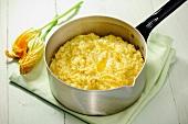 Saffron risotto in a pan, zucchini blossoms in the background