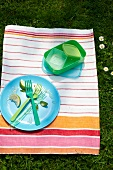 A cleared plate and picnic crockery on a striped cloth