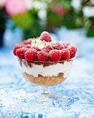 Tiramisu with raspberries