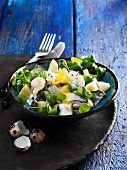 Herring salad with purslane, parsnips and poached quail's eggs