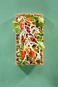 A crispbread topped with cucumber, tomatoes and sprouts