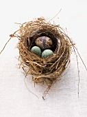 Quail's egg with marzipan egg in an Easter nest