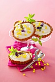 Tiramisu tartlets with mascarpone and candied violets