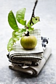 An apple attached to the twig on a stack of tea towels
