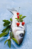 Sea bass and cherries