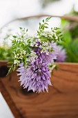 Fresh meadow herbs with chive flowers