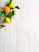 Citrus fruits on a white wooden surface