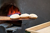 Lebanese bread rolls on a wooden bread peel in front of a wood-fired oven
