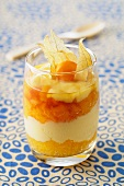 A layered dessert of apricots and caramel custard