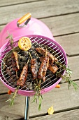 Lamb and rosemary kebabs on a pink barbecue