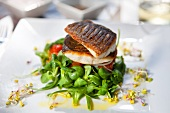 Crispy fried bass on a bed of lamb's lettuce with a lemon dressing