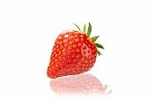 Eine Erdbeere