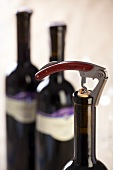 Bottle of red wine with corkscrew