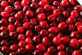 Viele Cranberries im Wasser (Bildfüllend)