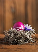 A bright pink egg decorated for Easter, in a nest with spring flowers