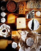 Assorted types of cheese on plywood
