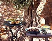 Different types of olives under an old olive tree