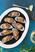 Green mussels topped with cheese and grilled, on a white plate with black salt