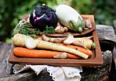 Fresh root vegetables, garlic and aubergines for soup on a wooden tray