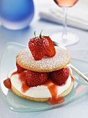 Strawberry Sable