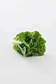 A romaine lettuce against a white background