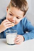Boy (4-5) eating cookie