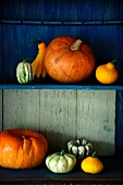 An arrangement of pumpkins