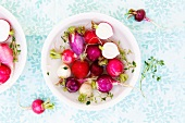A Variety of Radish Types in a White Bowl
