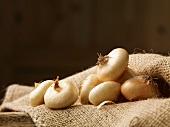 Onions lying on a jute bag