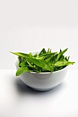 Wild garlic in a white dish