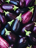 Aubergines (filling the image)