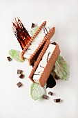 An ice cream sandwich with chocolate sauce and crystallised mint leaves