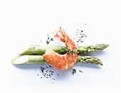 A prawn on two stalks of green asparagus