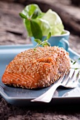 Salmon steak with a sesame seed crust