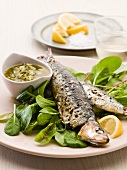 Grilled sardines with a herb sauce