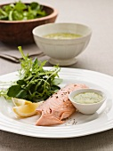 Sea trout fillet with salad leaves and a herb sauce