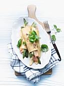 Cannelloni mit Lachs und grünem Spargel gefüllt