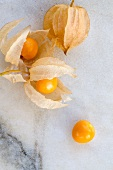 Four physalis (view from above)